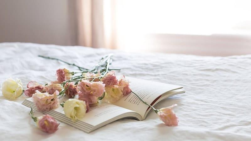 Kata-Kata Bijak Mario Teguh tentang Cinta - Buku dan Bunga