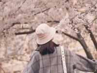 Kata-Kata Bijak Bahasa Inggris Singkat - Di bawah Pohon Sakura