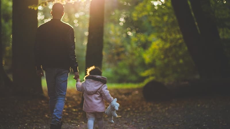 Kata Bijak tentang Perjuangan Seorang Ayah - Ayah Anak di Hutan