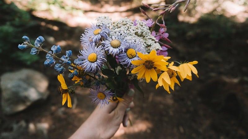 Kata-Kata Rayuan Gombal Romantis buat Gebetan - Bunga Warna Warni