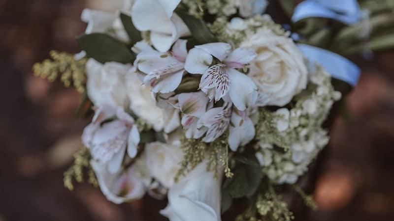 Bunga Putih Layu