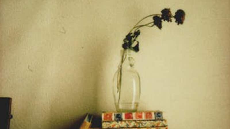 Bunga Kering di Vas