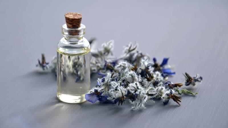 Kata Kata Sindiran buat Suami Pembohong - Parfum