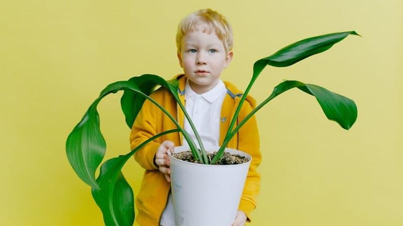 Kata Kata Sahabat Lucu - Pot Bunga