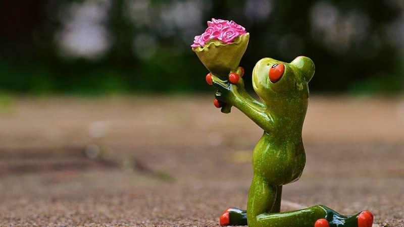 Kata-Kata Minta Maaf atas Kesalahan Selama Ini - Memberi Bunga