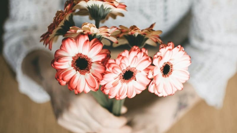 Kata Kata Minta Maaf Kepada Teman - Bunga