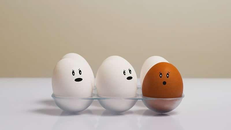 Kata- Kata Bijak tentang Perbedaan - Telur Beda Warna