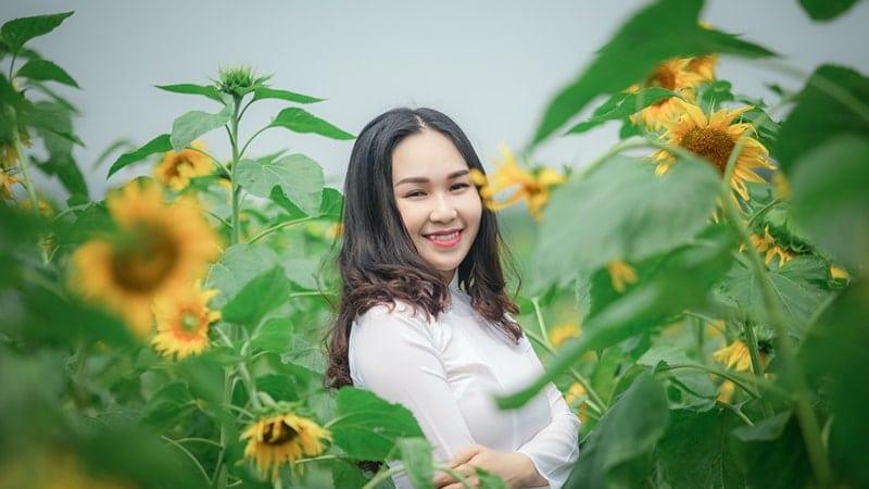 Di Taman Bunga Matahari