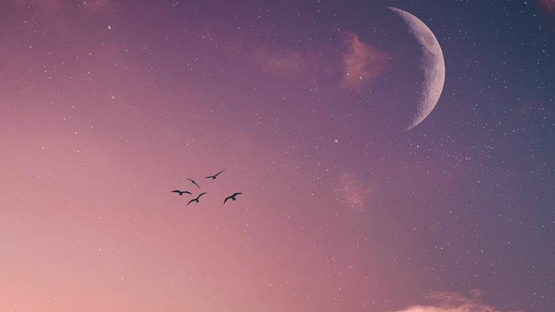 Langit Ungu