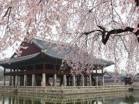 Kata Bijak Bahasa Korea - Istana GyeongBok