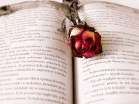 Kisah Nabi Yusuf dan Zulaikha - Ilustrasi Cerita Cinta