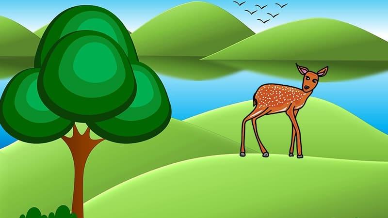 Dongeng Sang Kancil dan Cicak Badung - Ilustrasi Gambar Kancil