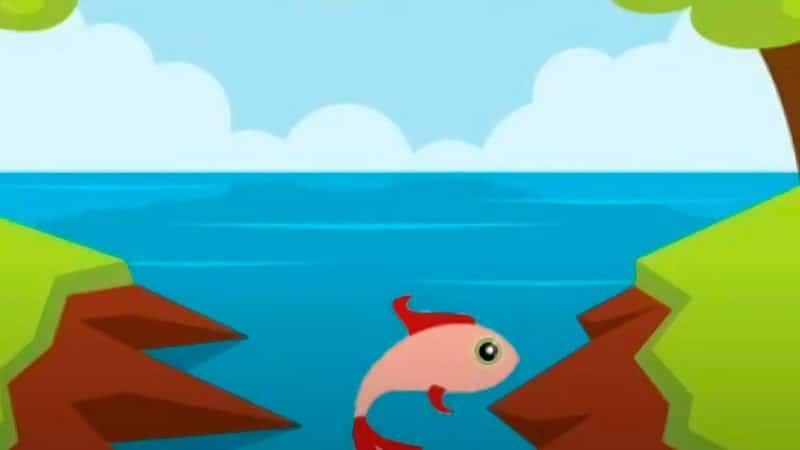 Cerita Fabel Ikan dan Burung - Ikan dan Sungai