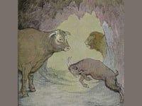 Cerita Pendek Kerbau dan Kambing - Ilustrasi Kerbau dan Kambing