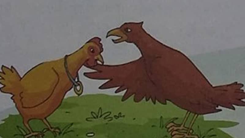 Dongeng Ayam dan Elang - Ayam Betina dan Elang