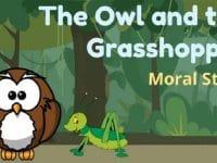 Cerita Burung Hantu dan Belalang - Owl and Grasshopper