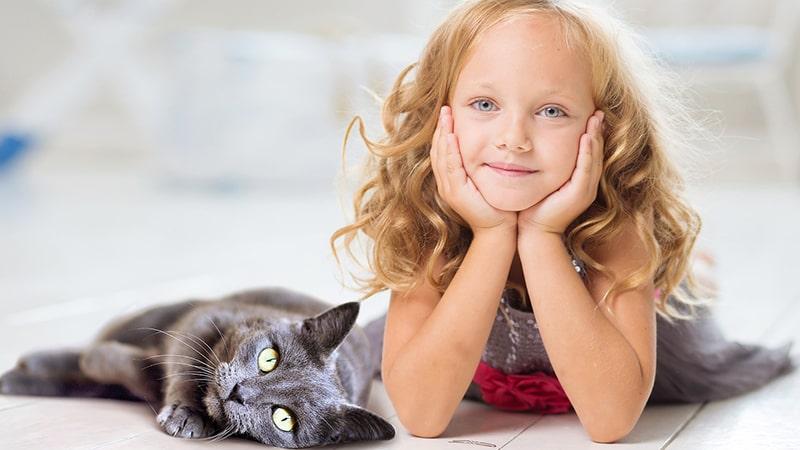 Cerita Rakyat Jambi Ibu Kandungu Seekor Kucing - Anak-Anak dan Kucing