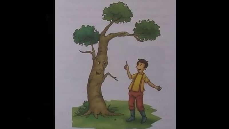 Dongeng Anak Rajin dan Pohon Pengetahuan - Pohon dan Anak Laki-Laki