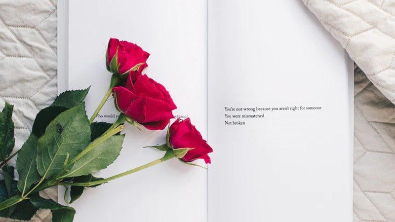 Kata Kata Baper Islami - Bunga Mawar