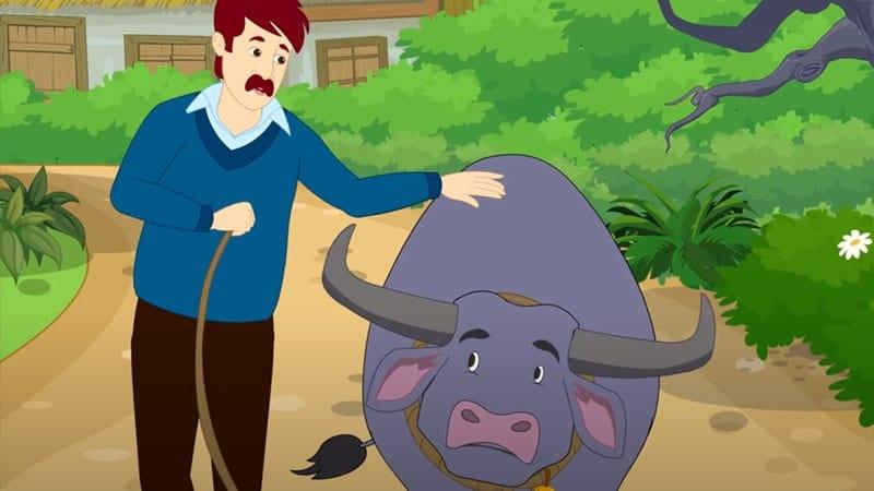 Cerita Dongeng Kerbau yang Cerdas - Kartun Kerbau