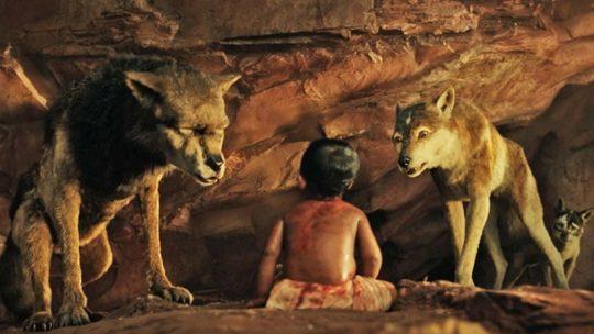 Cerita The Jungle Book - Kedatangan Mowgli