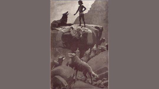 Cerita The Jungle Book - Pertemuan Kelompok Dipimpin Mowgli