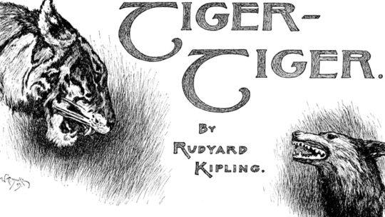 Cerita The Jungle Book - Tiger Tiger