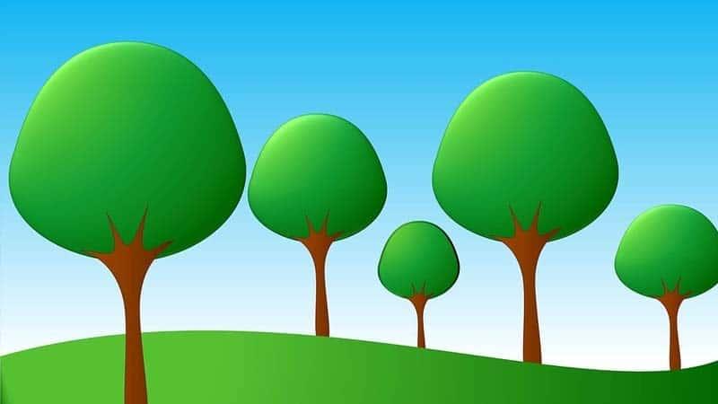 Dongeng Pohon Kelapa dan Pohon Pepaya - Hutan